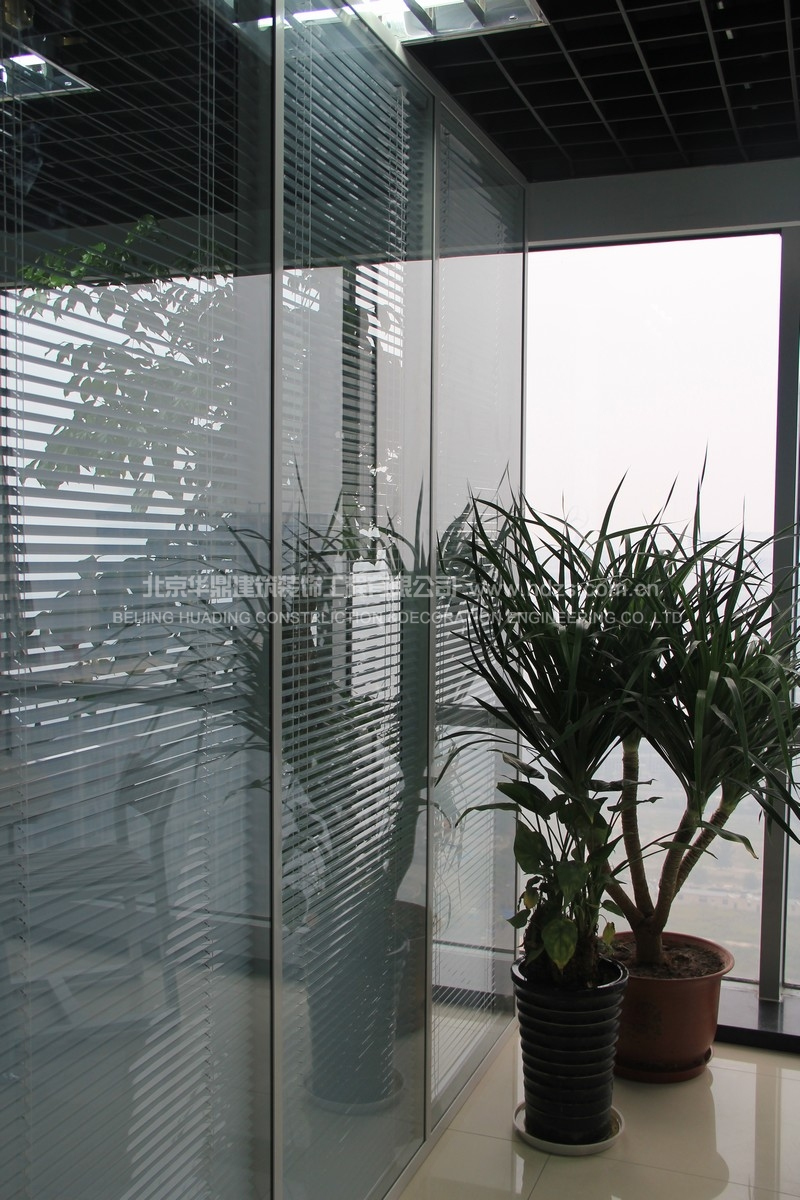 办公区绿植实景照